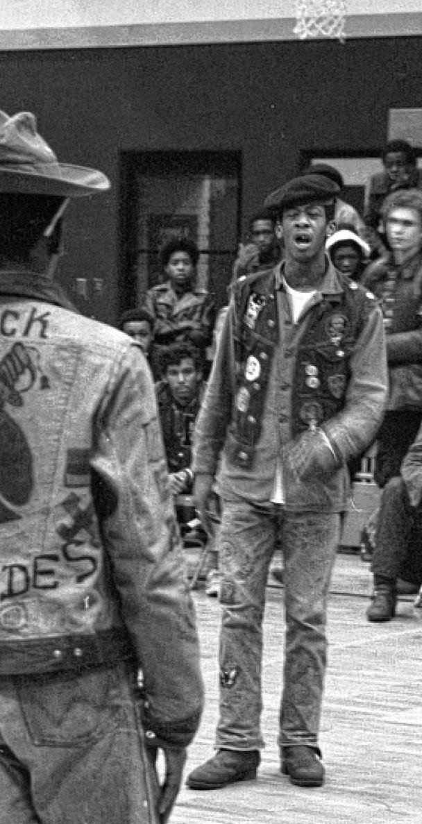 gangs cropped